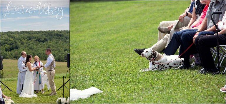 Jesse & Virginia / Summer Backyard Wedding / Binghamton, NY